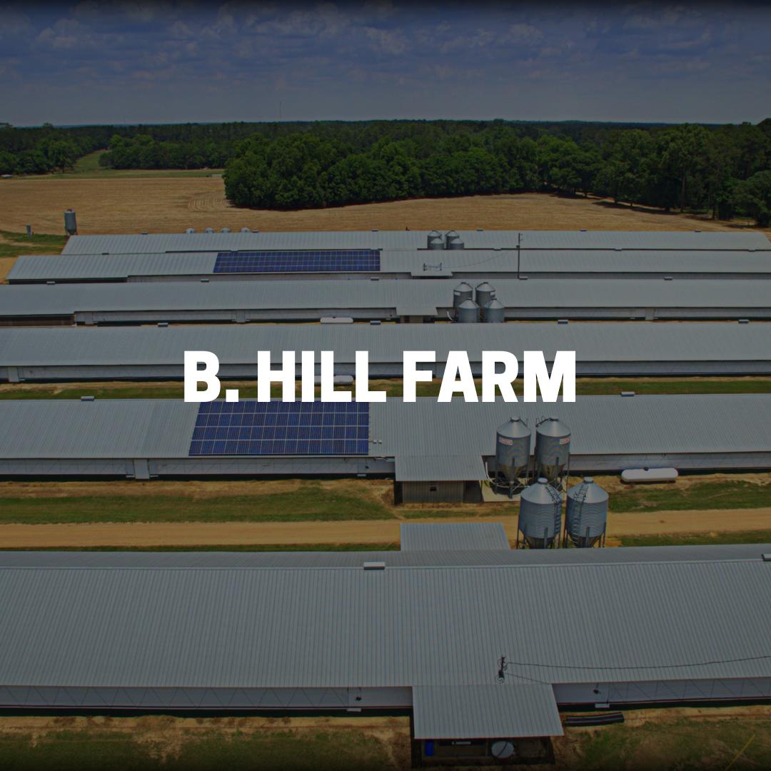 B Hill Farm