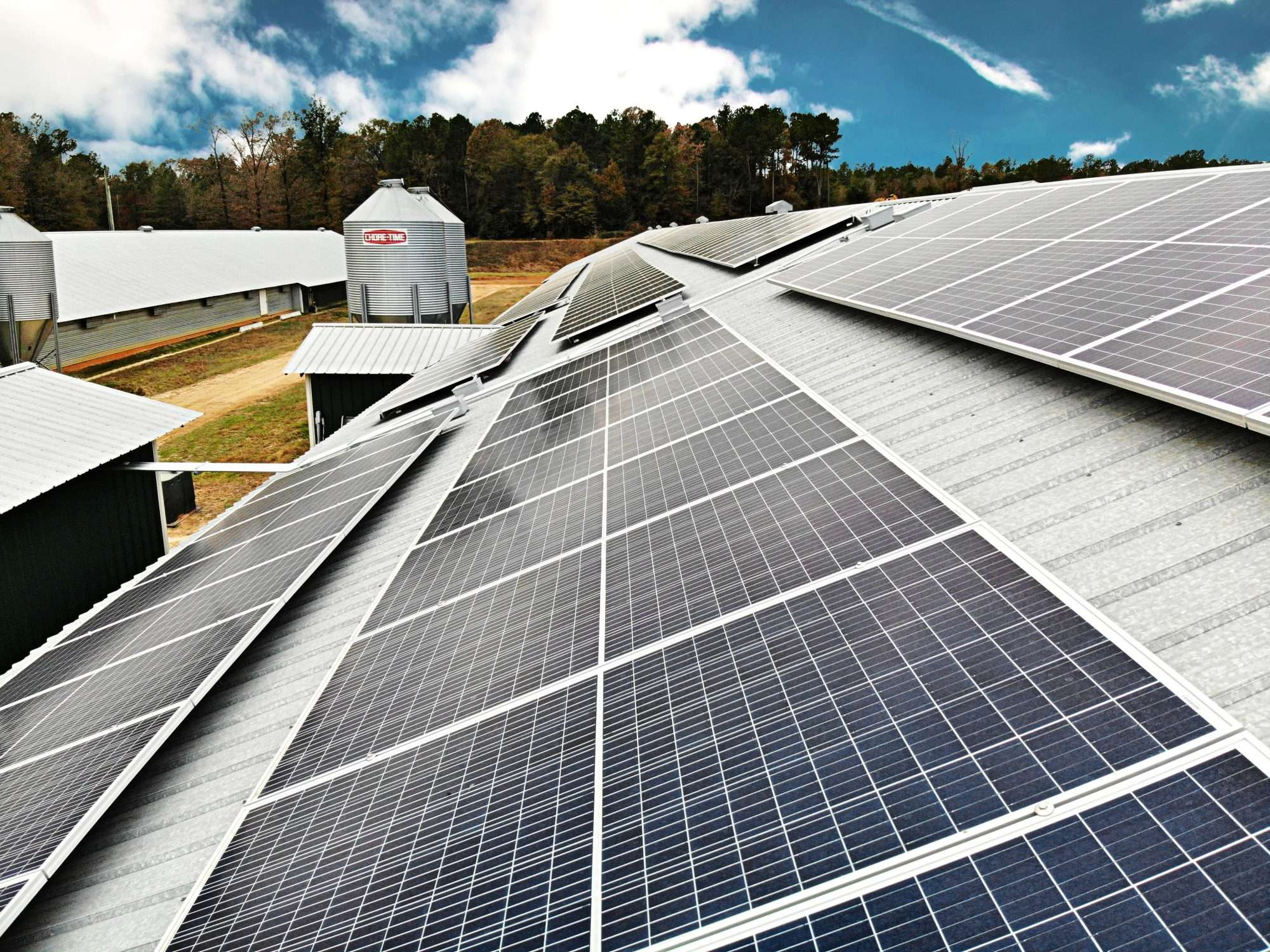 poultry farm with solar panels