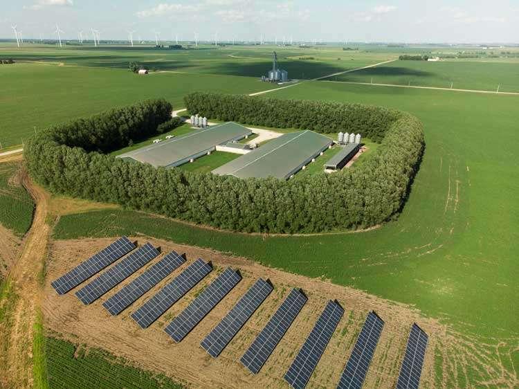 farm with solar panel arrays